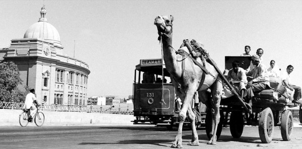 Photos-of-Karachi-Photo-of-a-Camel-Cart-and-Tram-in-Karachi-Pictures-of-Karachi