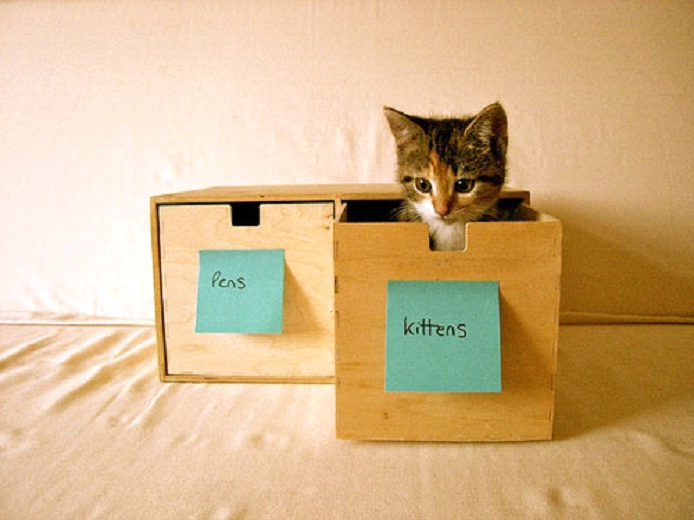 Awesome-Ways-to-Organise-Your-Cats-5