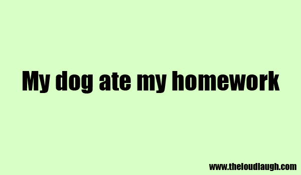 Funny Homework Excuses